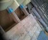 Vign_IMG00128-20121003-1211